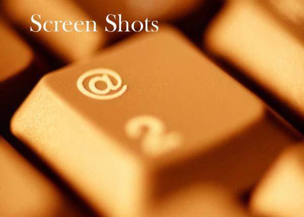 Donor Software Screen Shots